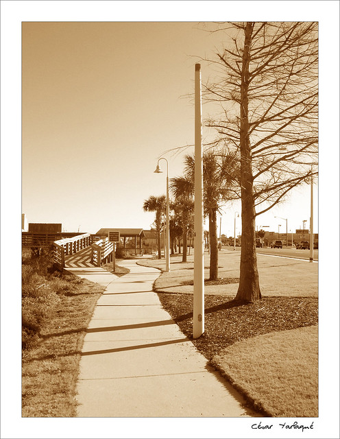 Gulf Shores Streets