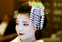 Portrait of maiko in May