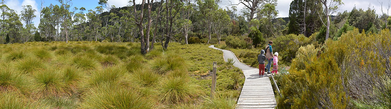 Enchanted Walk - Cradle Valley - Tasmania