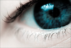 iris, vision care, eyelash, eyelash extensions, close-up, blue, eye, organ,