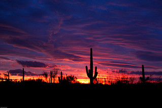 Sunset in AZ