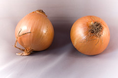 coconut(0.0), plant(0.0), fruit(0.0), vegetable(1.0), onion(1.0), shallot(1.0), produce(1.0), food(1.0),