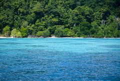 Similan Island By Speedboat