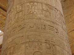 Egypt- (42)