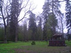 Parque Nacional Bialowieza
