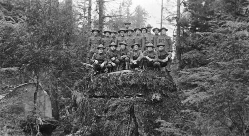 Spruce Division soldiers on stump