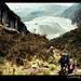 grasberg-mine-zebra-carstensz-trek