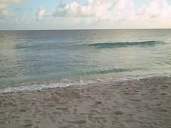 Allamanda Beach