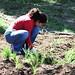 Green Impact Zone Rain Garden Installation - Troostwood Neighborhood (May 8, 2010)