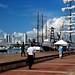 Small photo of Cartagena old harbor