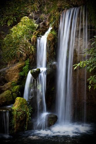 water garden waterfall spring arboretum slowshutter