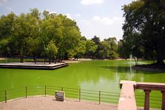Lago Menor_0896