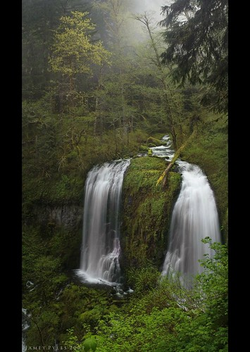 morning fog canon real moss stitch double columbiarivergorge mccordcreek uppermccordcreekfalls canon3580mm canon40d spring2009