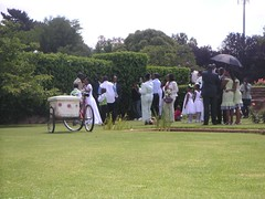 a wedding in the park