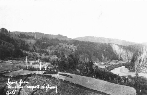 Scene from Corvallis-Newport highway postcard