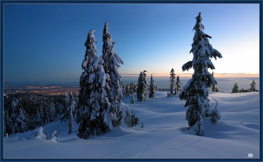 Блоги. Живописные панорамы Ванкувера с горы Grouse. города, самые, снизу, Источник, панорама, великолепная, недалеко, Ванкувера, высота, открывается, находится