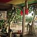 Small photo of Independence Bar, Ko Lanta