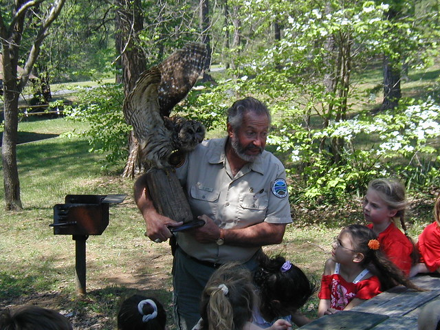Nature hikes are a big part of the Junior Ranger program.