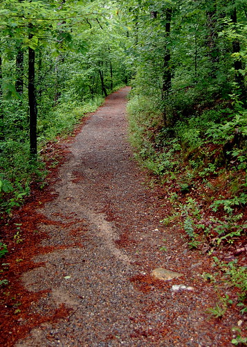 arkansas nationalparkservice nationalparks hikingtrails hotspringsnationalpark