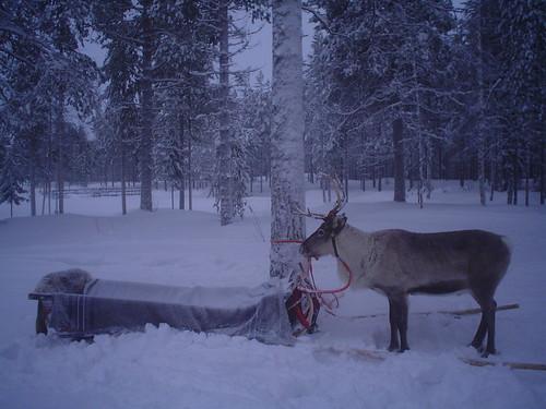 Napapiiri, Finlandia