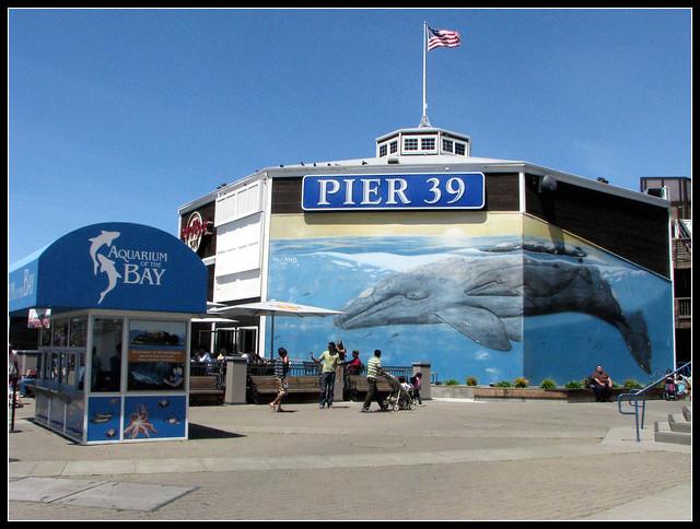 Aquarium Of The Bay Pier 39 Flickr Photo Sharing