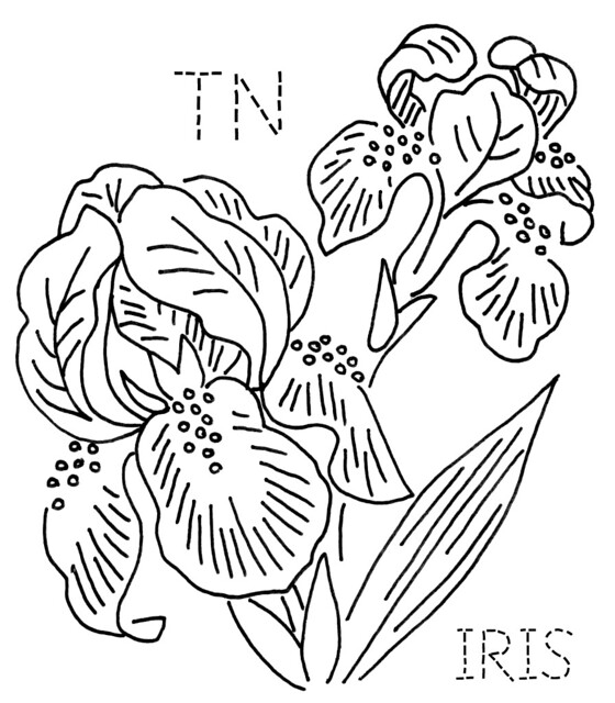 garden state parkway sign coloring pages | Tennessee Iris | To download the 6-inch block size, click ...