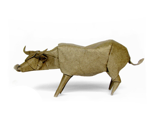 Buffalo (Pham)