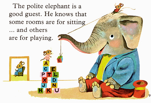 Polite Elephant - rooms