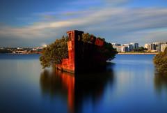 Homebush Bay Wreck - SS Ayrfield