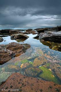 Low Tide :: Avalon Beach
