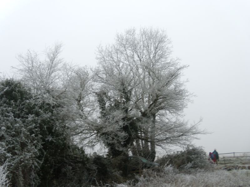 Over a frosty stile Wanborough to Godalming