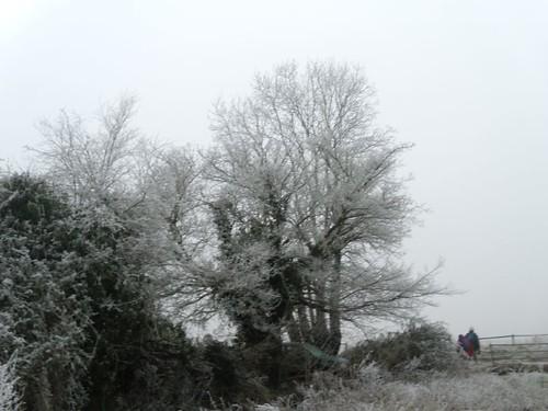 Over a frosty stile