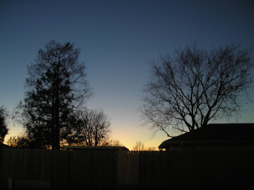 christmas blue winter light sunset sky holiday evening louisiana