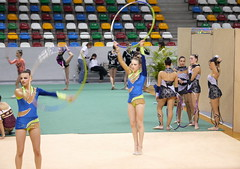 floor gymnastics(0.0), individual sports(1.0), sports(1.0), performing arts(1.0), gymnastics(1.0), gymnast(1.0), rhythmic gymnastics(1.0),