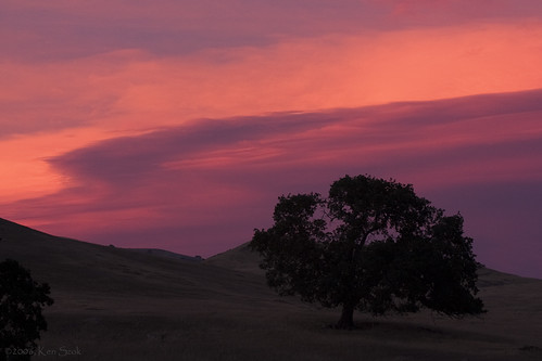 california sunset nature canon outdoors dusk sunsets socal canondslr tehachapi caliente canon70200f4l diamondclassphotographer flickrdiamond paololivornosfriends aphotographersnature
