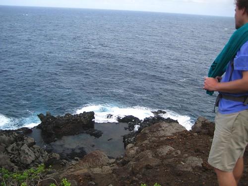 maui, hawaii, vacation, tropical, island, t… IMG_1716