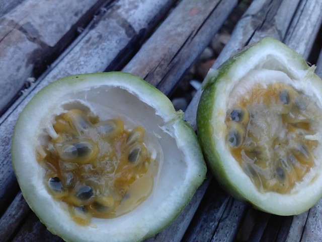 markisa : passion fruit | Flickr - Photo Sharing!