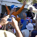 Small photo of Allan Davis 2009 TDU Winner