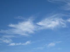 Blue Skies of Scottsdale