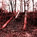 Druid Hill Park Photowalk 127 Stairs to nowhere by chamgreen102
