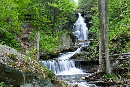 Ozone Falls tumbles between rocks and trees at Ricketts Glen, Pennsylvania State Parks