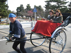rickshaw, vehicle, land vehicle, carriage, cart,