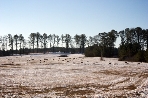 morning snow field georgia landscape countryside cowetacounty fischerroad
