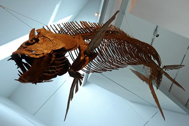 Xiphactinus audax, just hanging around | Flickr - Photo ...
