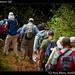 Hiking with Warner (9)