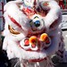 Chinese New Year of the Ox 055