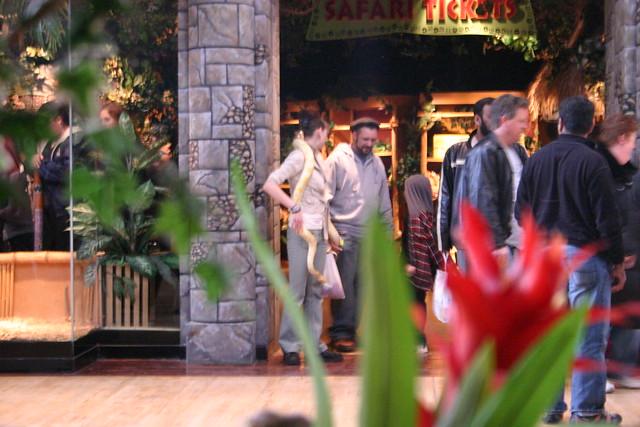 Rainforest Cafe Gurnee Menu Prices