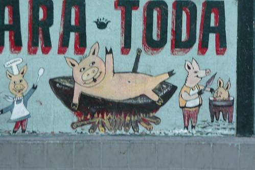 happy pigs?