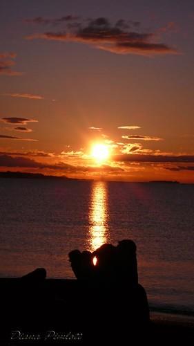 ocean sea sun clouds sunrise victoriabc facetothesun golddragon ladydipim