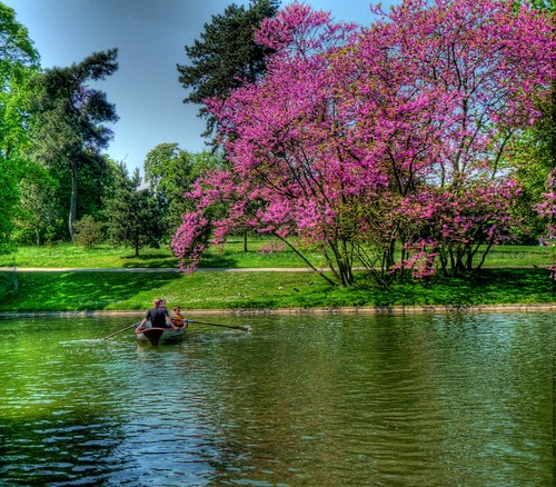 first day of May in Bois De Vincennes